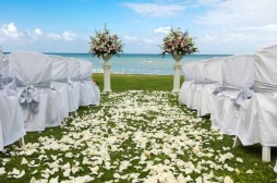 Pierre Carr, Exclusive Tropical Weddings